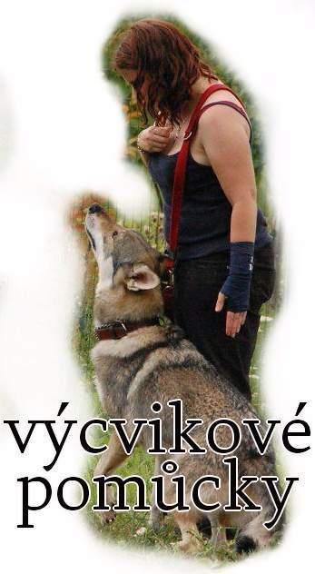 http://www.sdivokoukrvi.cz/clanky/vycvikove-pomuacky