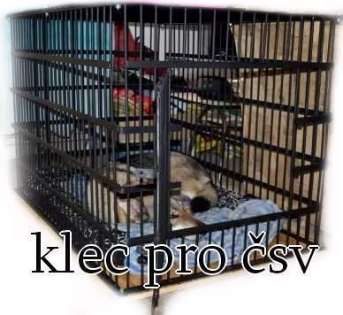 http://www.sdivokoukrvi.cz/clanky/vlcakuvzdorna-klec