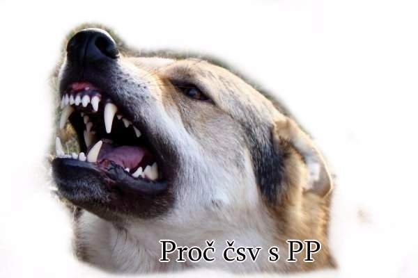 http://www.sdivokoukrvi.cz/clanky/proc-psa-s-pp/proc-csv-s-pp