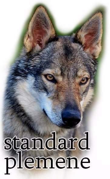 http://www.sdivokoukrvi.cz/clanky/csv---standart-a-historie