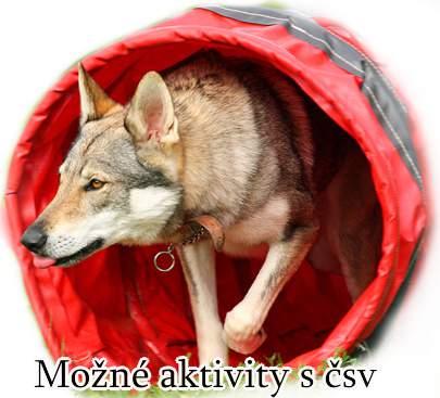 http://www.sdivokoukrvi.cz/clanky/csv---mozne-aktivity