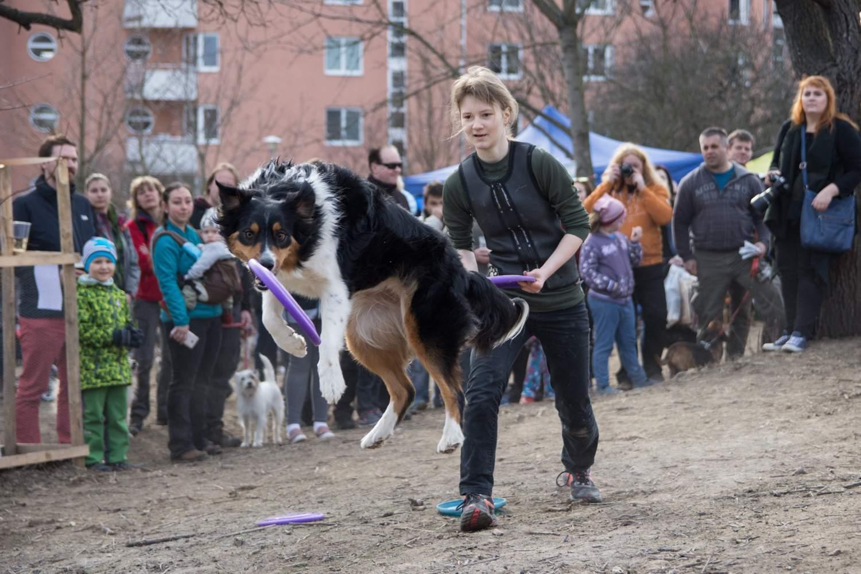 Návštěvníky zaujalo frisbee vystoupení Anny Urbánkové a jejího psa. Foto: Markéta Sulková