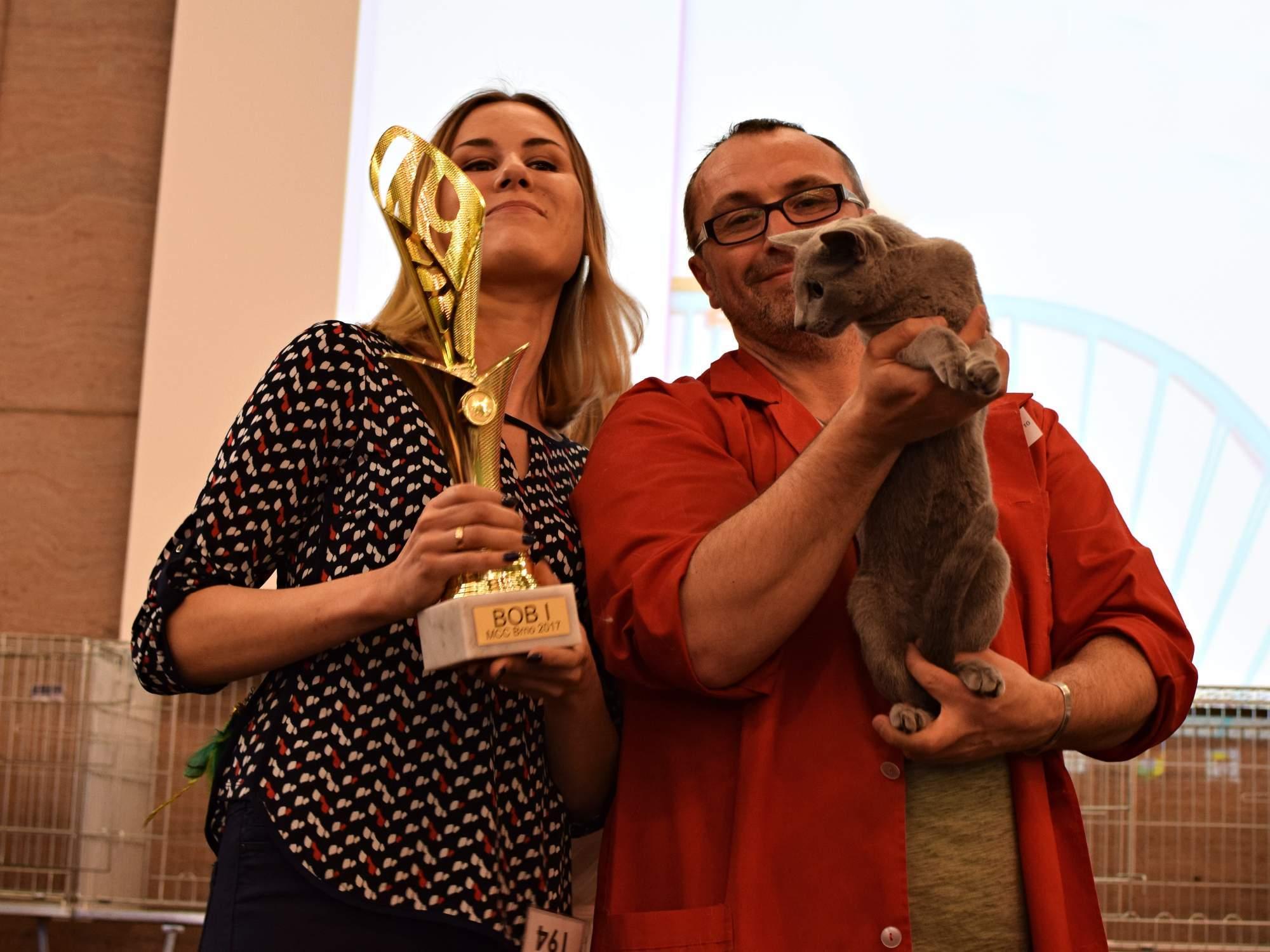 Vítězná kočka ze všech kategorií. Foto: Lenka Jebáčková