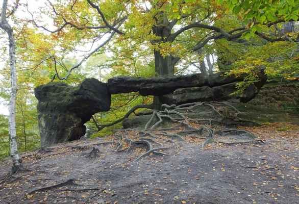 kleines prebischtor - malá pravčická brána v sasku...