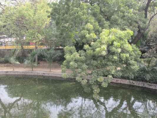 """Dále v  zahradě  jsou zbytky vodního toku, který spojuje řeku Yamunu s hrobkou Sikandar Lodi . Tato hrobka má ještě cimbuří, které ji obklopují. V blízkosti hrobky Sikander je Athpula (""""Eight Piered"""") most, poslední z budov v Dillí, postavený za vlády Mughal císaře Akbar ,]obsahuje sedm oblouků, z nichž centrální je největší. Hrobka Mohammeda Shaha, posledního z vládců Sayyidových dynastií, nejstarší z hrobek v zahradě, byla postavena v roce 1444 Ala-ud-din Alam Shah jako pocta Mohamedovi Shahovi. Hrobka je osmiúhelníkového tvaru, s četnými okrasnými chhatrymi v hinduistickém stylu kolem centrální kopule s četnými oblouky, verandami a šikmými opěrkami. V každém rohu jsou věžičky. Hlavní hrobka je podporována 16-ti stranným bubnem. Je to zploštělý typ a je obklopen chhatrizem , což zřejmě snižuje jeho podstatně větší základnu. O několik let později se zdá , že hrobka Sikandar Lodi byla z této Sayyidské hrobky zkopírována"""