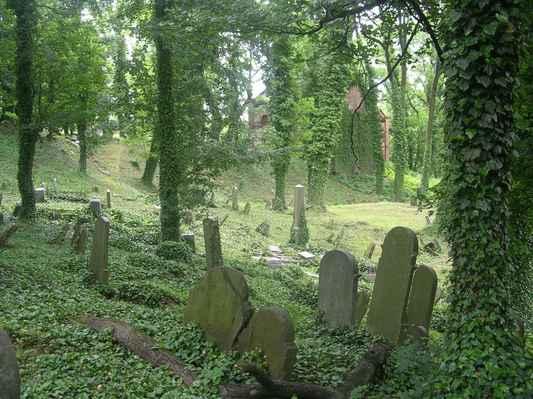židovský hřbitov - Těšín (3)