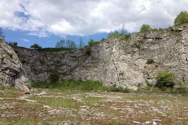 Štramberk - lom Kotouč - Botanická zahrada - Celý lom zarůstá a zarůstá a stále více zajímavých rostlin a endemitů zde zapouští kořeny.