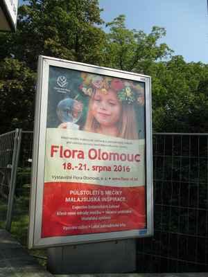 Zdravím všechny přátele rajčete. Pojďte si prohlédnout výstavu Flora Olomouc .