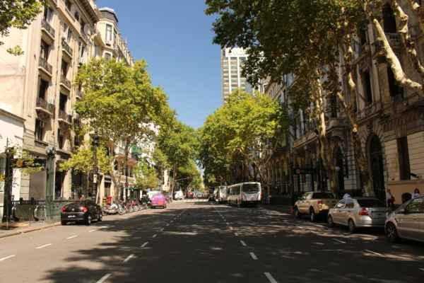 široký platany lemovaný bulvár Avenida de Mayo