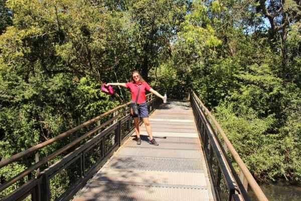 chodníky v džungli národního parku